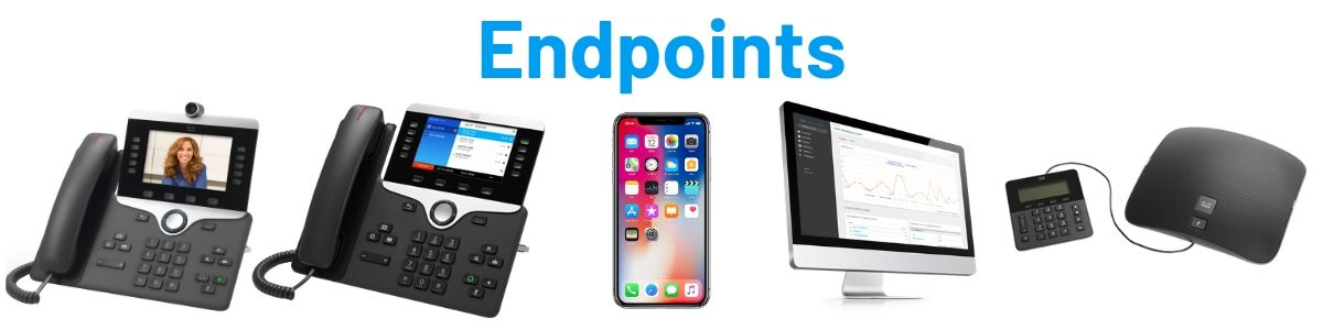 telephony Endpoints