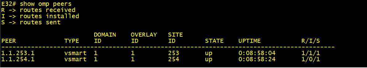 """SDWAN command output taken from our WAN Edge """"E32"""""""